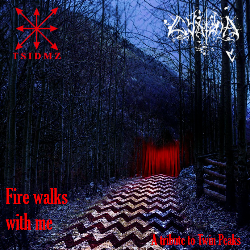 T.S.I.D.M.Z./Cydonia  «Fire WalkS with Me»